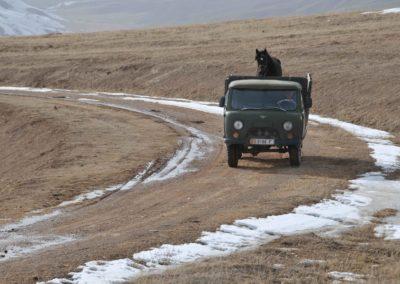 Kirghizistan (26)